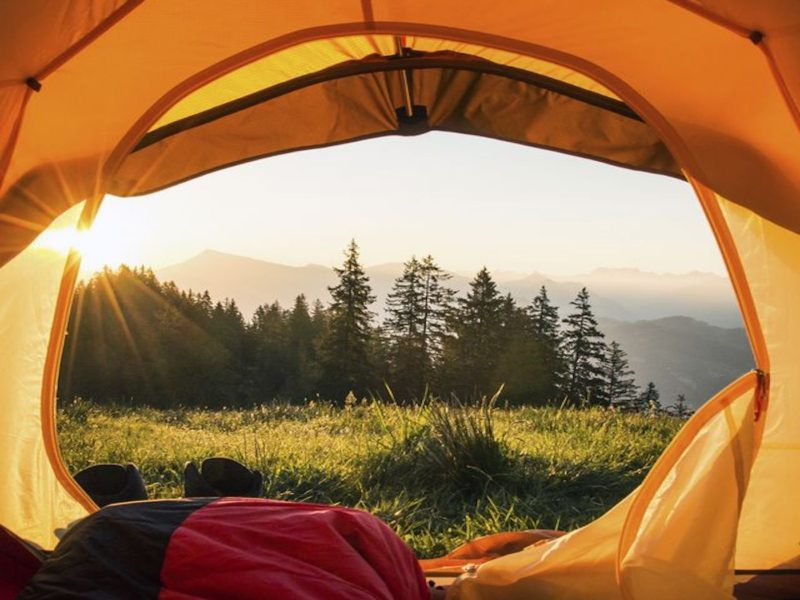 Wilderness Camping T
